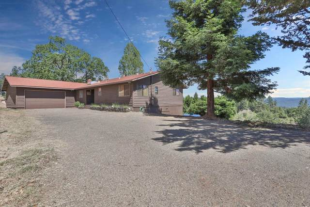 4001 Leisure Lane, Placerville, CA 95667 (MLS #221052585) :: 3 Step Realty Group