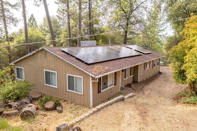 22981 Moss Ln, River Pines, CA 95675 (MLS #221053092) :: Heidi Phong Real Estate Team
