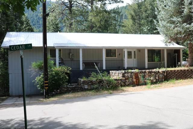 38 Cedar Lane, Sierra City, CA 96125 (MLS #221057363) :: The Merlino Home Team