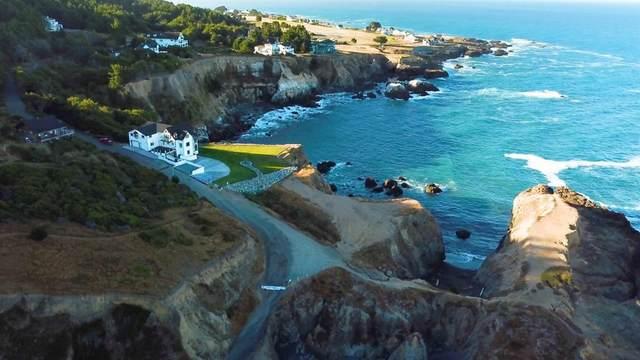 266 Dolphin Drive, Whitethorn, CA 95589 (MLS #221060946) :: Heidi Phong Real Estate Team