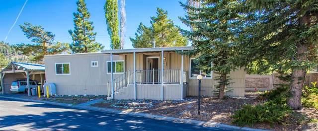 1080-spc 110 Julie Lane #110, South Lake Tahoe, CA 96150 (MLS #221071626) :: REMAX Executive