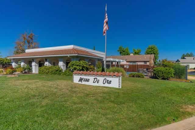 104 Mesa De Oro Circle, Sutter Creek, CA 95685 (MLS #221084085) :: eXp Realty of California Inc