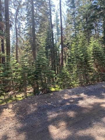 0 Ararat Drive, Bucks Lake, CA 95971 (MLS #221084544) :: Heidi Phong Real Estate Team