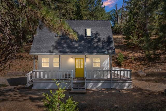 4852 Blue Mountain Road, Wilseyville, CA 95257 (MLS #221087929) :: Keller Williams - The Rachel Adams Lee Group