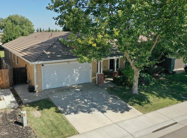 3607 W River Drive, Sacramento, CA 95833 (MLS #221088936) :: Heather Barrios