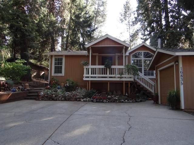 16835 Alpine Drive, Pioneer, CA 95666 (MLS #221089232) :: 3 Step Realty Group