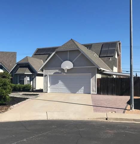 1963 Cypress Court, Oakley, CA 94561 (MLS #221096258) :: REMAX Executive