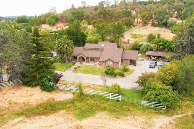 6175 Sierra College Boulevard, Rocklin, CA 95677 (MLS #221103441) :: Dominic Brandon and Team