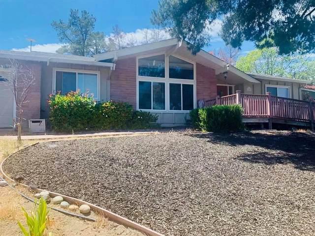 1825 Del Rio Drive, Lafayette, CA 94549 (MLS #221106355) :: Heidi Phong Real Estate Team