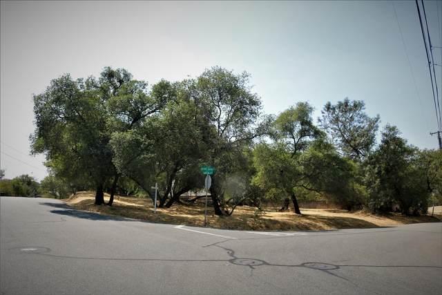 4140 SW Secret Ravine Way, Rocklin, CA 95677 (MLS #221106800) :: Dominic Brandon and Team