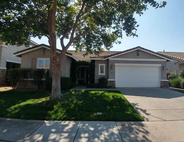 5704 Foxview Way, Elk Grove, CA 95757 (MLS #221110217) :: Heidi Phong Real Estate Team