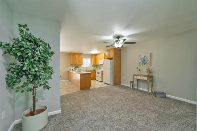 7005 Forest Hill Drive, Diamond Springs, CA 95619 (MLS #221111643) :: Heidi Phong Real Estate Team