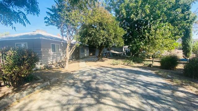 16751 County Road 87, Esparto, CA 95627 (MLS #221119451) :: 3 Step Realty Group