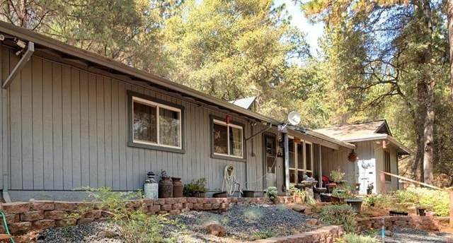 10051 Holcomb Drive, Grass Valley, CA 95949 (MLS #221121196) :: DC & Associates