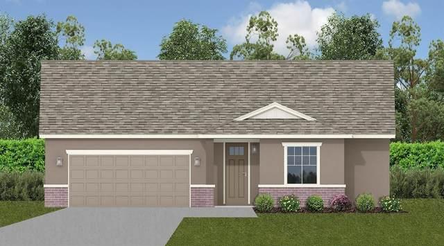 1439 Dunwoody, Olivehurst, CA 95961 (MLS #221131222) :: Heather Barrios
