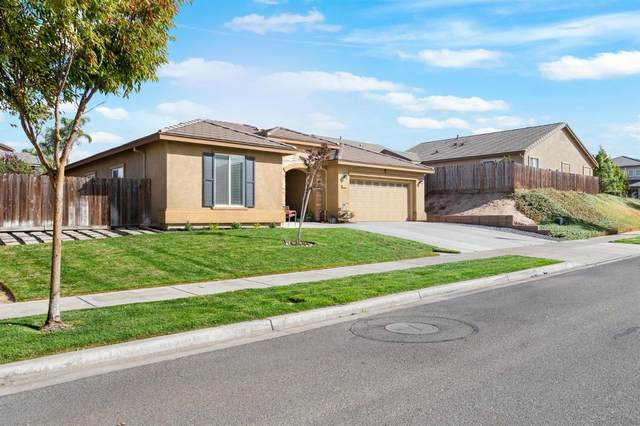 439 Shadow Creek Avenue, Oakdale, CA 95361 (MLS #221131385) :: Keller Williams Realty