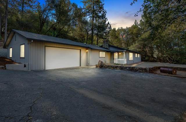 3855 Nugget Lane, Placerville, CA 95667 (MLS #221135281) :: Heidi Phong Real Estate Team