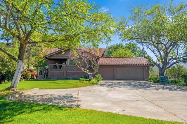 3830 Putah Creek Road, Winters, CA 95694 (#321022146) :: Rapisarda Real Estate