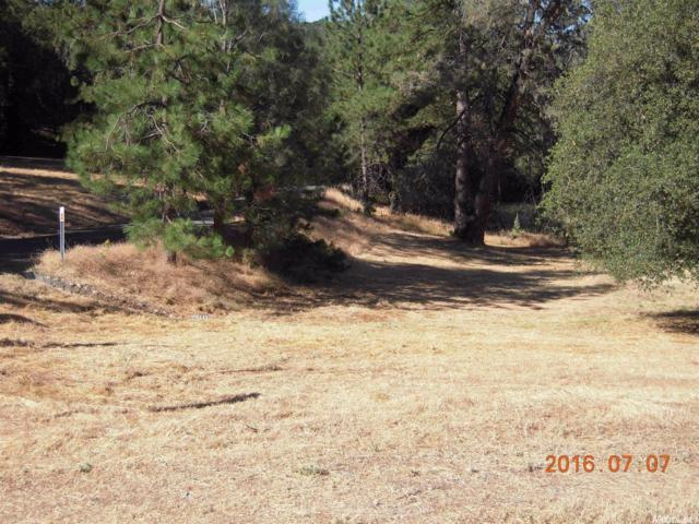 0 Nutmeg Road, Placerville, CA 95667 (MLS #16042322) :: NewVision Realty Group