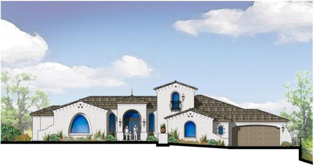 5263 Da Vinci Drive, El Dorado Hills, CA 95762 (MLS #18002162) :: Heidi Phong Real Estate Team
