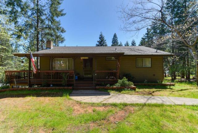 16509 Meadow Vista Drive, Pioneer, CA 95666 (MLS #18029018) :: Heidi Phong Real Estate Team