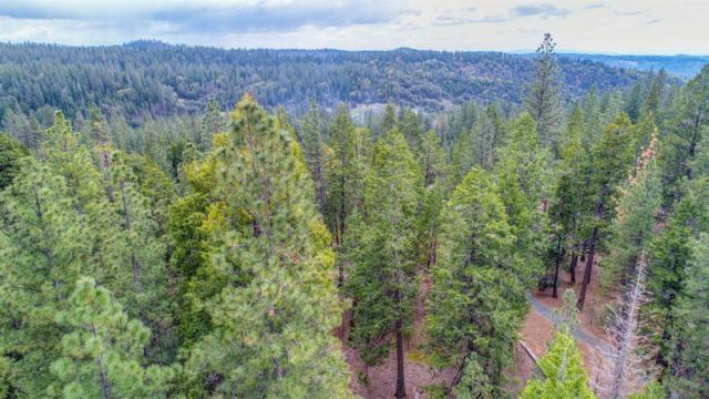 25594 Overland Drive, Volcano, CA 95669 (MLS #18029053) :: Heidi Phong Real Estate Team