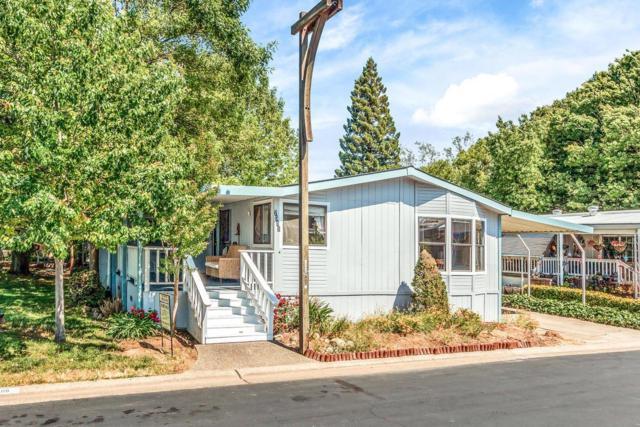 7351 Sonora Drive, Rancho Murieta, CA 95683 (MLS #18029114) :: Keller Williams - Rachel Adams Group