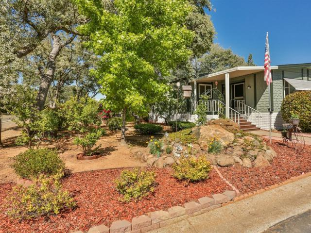 4700 Old French Town Road #53, Shingle Springs, CA 95682 (MLS #18031394) :: NewVision Realty Group