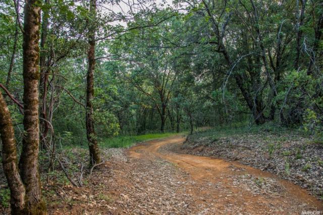 22235 Canyon Way, Colfax, CA 95613 (MLS #18033495) :: The Merlino Home Team