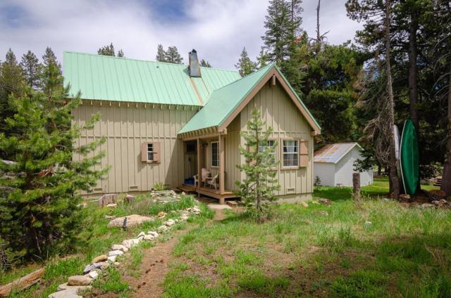 30175 Plasse Road, Kirkwood, CA 95646 (MLS #18038246) :: Heidi Phong Real Estate Team