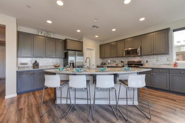 305 Bougainvilla Drive, Brentwood, CA 94513 (MLS #18038785) :: Keller Williams - Rachel Adams Group