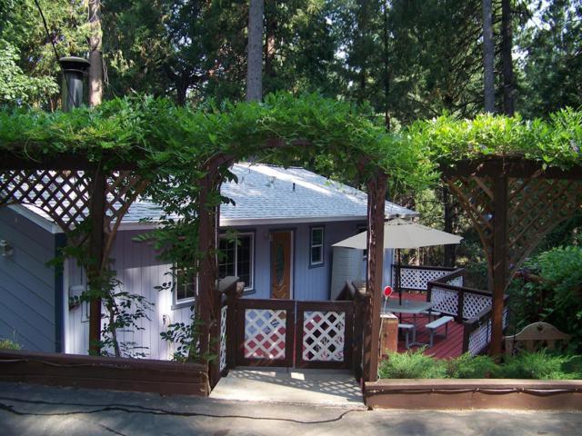 5677 Sierra Springs Drive, Pollock Pines, CA 95726 (MLS #18046653) :: Dominic Brandon and Team