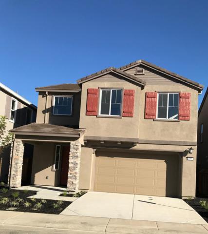 680 Jade Way, Fairfield, CA 94534 (MLS #18048525) :: Heidi Phong Real Estate Team