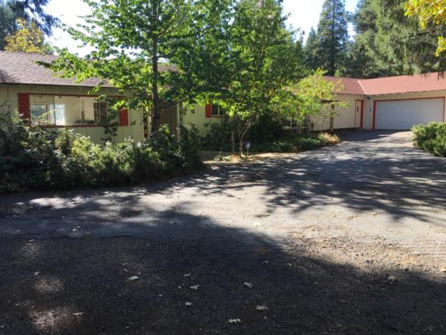 5310 Gilmore Road, Pollock Pines, CA 95726 (MLS #18067926) :: Heidi Phong Real Estate Team