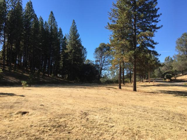 2031 Hidden Gold Trail, Cool, CA 95614 (MLS #18068465) :: NewVision Realty Group