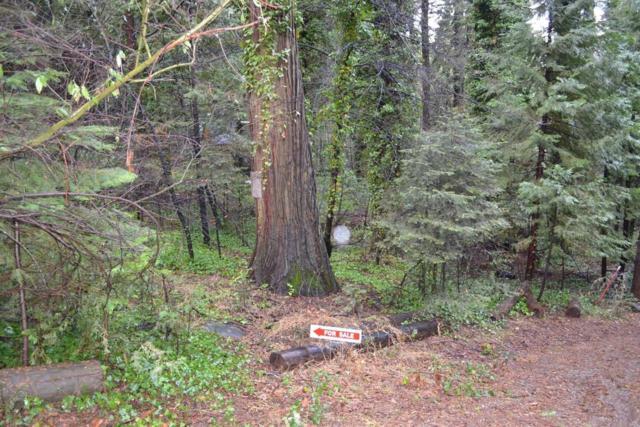 2831 Pine Court, Pollock Pines, CA 95726 (MLS #19003418) :: REMAX Executive