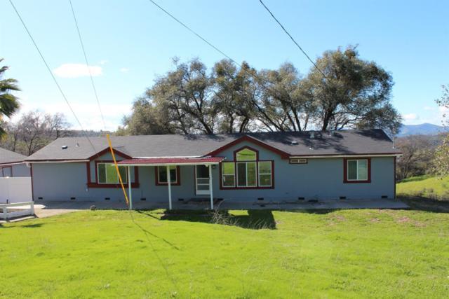 19464 Rawhide Road, Sonora, CA 95370 (MLS #19008263) :: Heidi Phong Real Estate Team