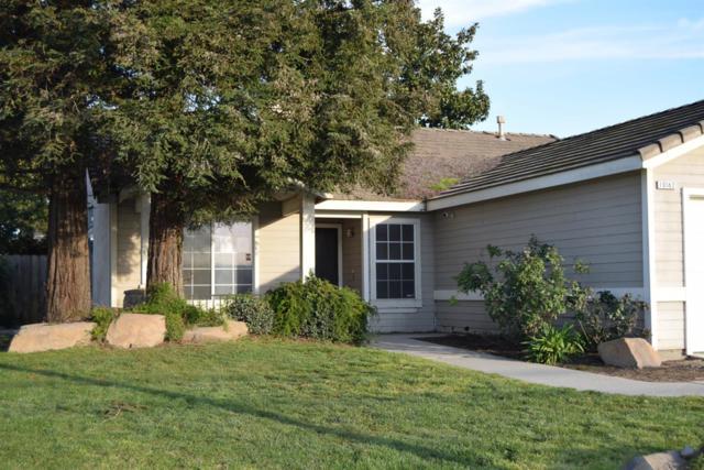 10162 Merced Avenue, Delhi, CA 95315 (MLS #19010823) :: Heidi Phong Real Estate Team