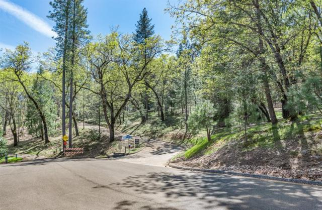 6781 Nugget Drive, Foresthill, CA 95631 (MLS #19015111) :: REMAX Executive