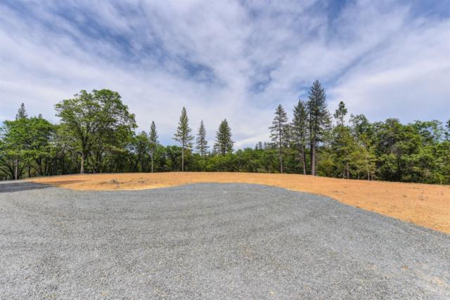 21648 Salt Creek Road, Grass Valley, CA 95949 (MLS #19017465) :: Heidi Phong Real Estate Team