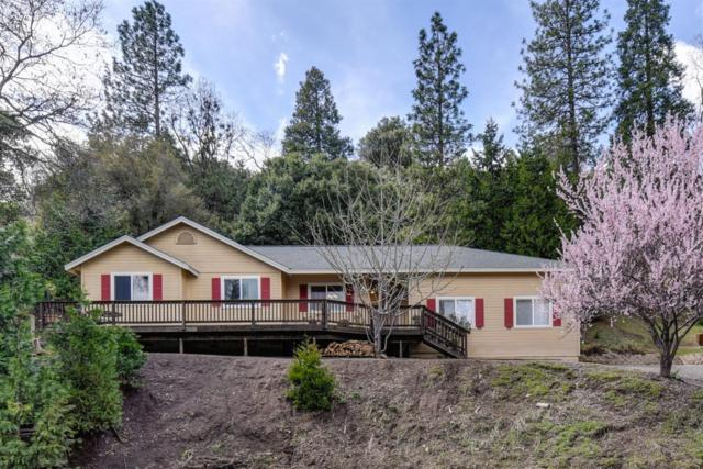 16525 S Silver Drive, Pioneer, CA 95666 (MLS #19018657) :: The MacDonald Group at PMZ Real Estate