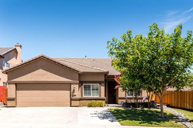5521 Mable Rose Way, Antelope, CA 95843 (MLS #19049091) :: eXp Realty - Tom Daves