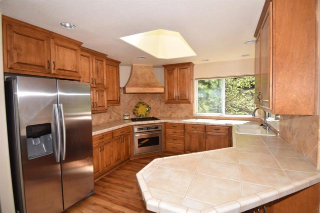 12368 Appaloosa Court, Grass Valley, CA 95949 (MLS #19056382) :: Heidi Phong Real Estate Team