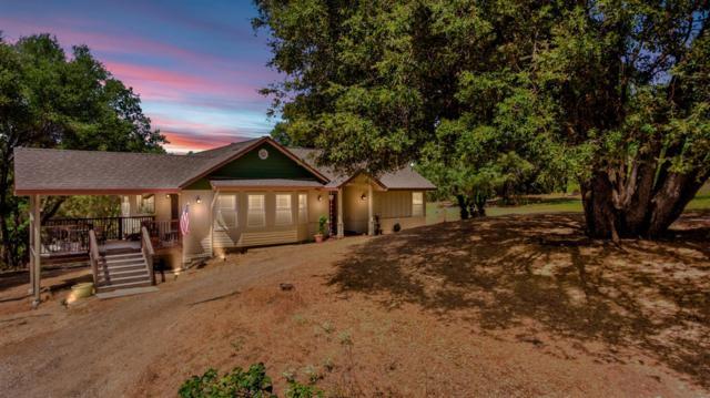 4807 Dream Ranch Court, Placerville, CA 95667 (MLS #19056739) :: Keller Williams - Rachel Adams Group