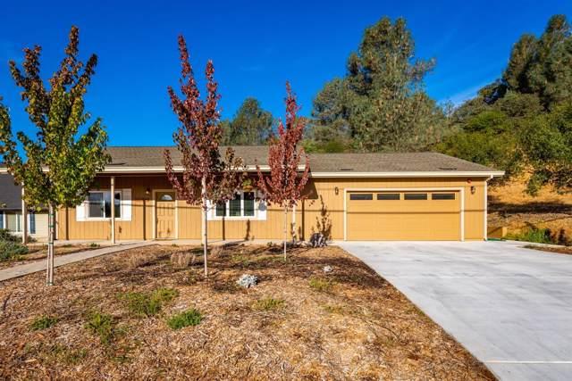 1463 American River Trail, Cool, CA 95614 (MLS #19065206) :: Heidi Phong Real Estate Team