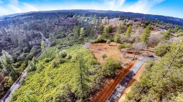 14521 Surrey Junction Lane, Sutter Creek, CA 95685 (MLS #20000403) :: eXp Realty of California Inc