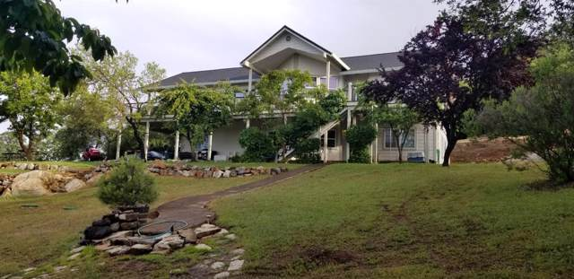 19828 Valley Vista Way, Penn Valley, CA 95946 (MLS #20000864) :: Keller Williams - Rachel Adams Group