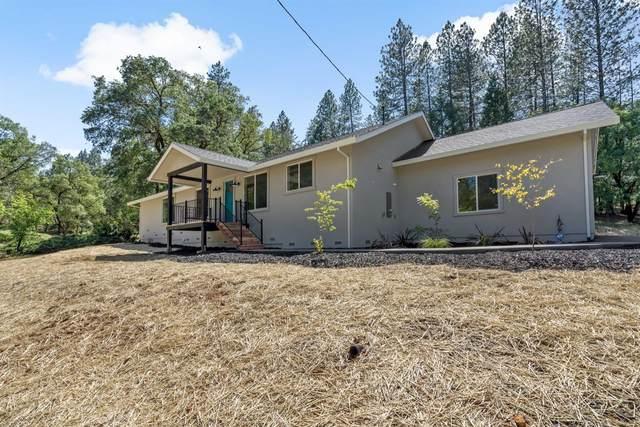 1370 Oak View Lane, Meadow Vista, CA 95722 (MLS #20029243) :: Dominic Brandon and Team