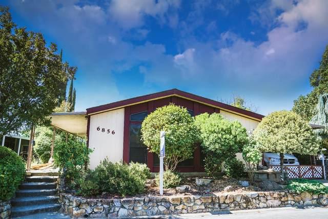 6856 Lake Cove Lane, Citrus Heights, CA 95621 (MLS #20035303) :: 3 Step Realty Group