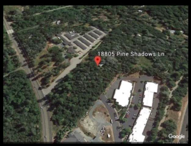 18805 Pine Shadows Lane, Penn Valley, CA 95946 (MLS #20053867) :: Keller Williams - The Rachel Adams Lee Group